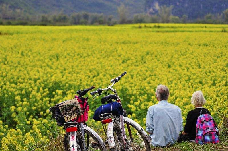 """多伦县实施景观作物种植补贴 打造""""千赢国际老虎机+农业"""""""