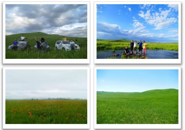 牧场情怀-我们相遇草原
