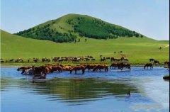 <b>辽阔草原我的家 心中圣地就是它</b>