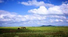 奔向草原深处,锡盟草原5日避暑自驾游